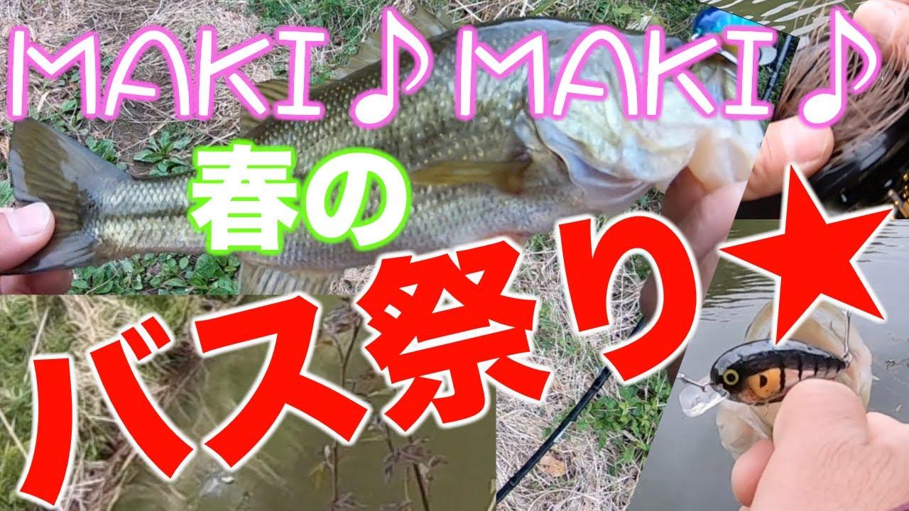 MAKI♪MAKI♪春のバス祭り★【ベイトフィネス】【野池/栃木県】