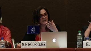 Panel III: Applying policy and operational frameworks in a migration context