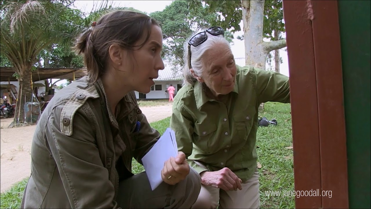 Jane Goodall: 'Without hope there's no point in continuing on'