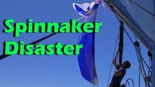 Spinnaker Disaster- Pacific Ocean Crossing - Day 3 - Sailing doodles