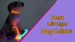 Brightest LED Dog Collars || Best LED Light up Glow Dog Collars