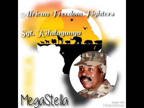 Super African Freedom Fighters