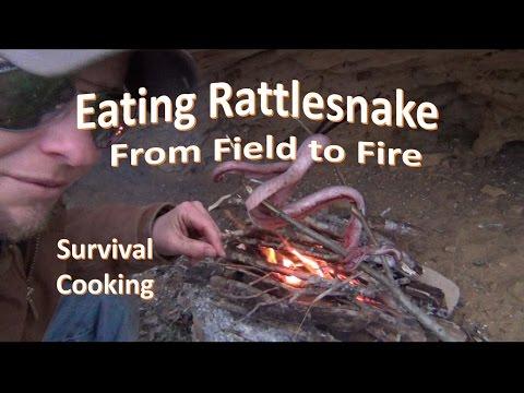 How to Kill Skin Cook RATTLESNAKE