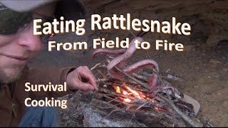 How to Kill Skin Cook RATTLESNAKE