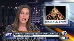 Recycle your Christmas tree in Boca Raton