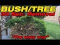 DIY TIP #01: Worlds Easiest and fastest way to remove Shrubs, Bushes, and Trees!