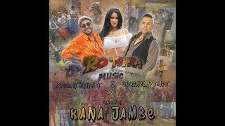 Kana Jambe (Colaj - ALBUM - Full Mp3) - Bogdan Artistu & Sorinel Pustiu