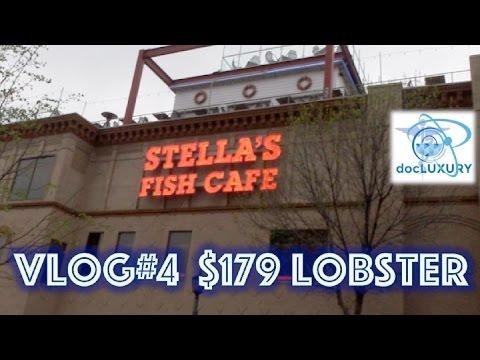 VLOG #4   Stella's Fish Cafe
