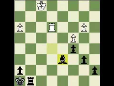 Chess lesson : The Art of Tempo moves