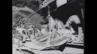 Август 1939 года.