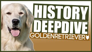 GOLDEN RETRIEVER HISTORY DEEPDIVE