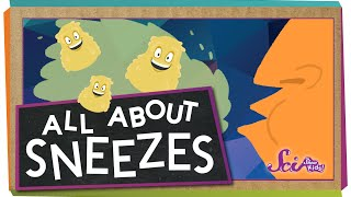 All About Sneezes!