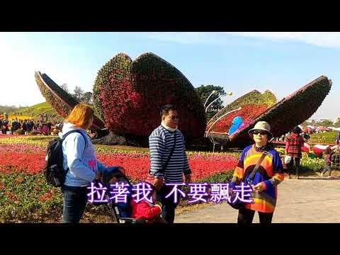 Deng Yu Taipei travel third day Taichung International Flower Carpet Festival