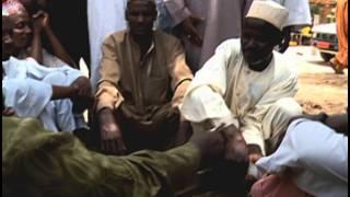 Éviter les épidémies du bétail au Cameroun