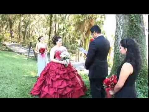 Amer + Amanda's Wedding