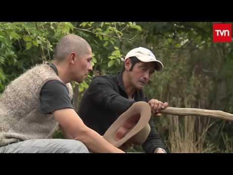 Frutos del país: Cochamó