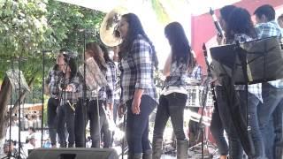 Banda Las Caprichosas de Ayotitlan Jalisco