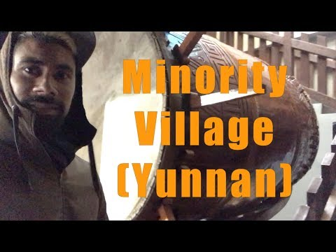 China vlog#17: Yunnan Minority Village (Kunming)