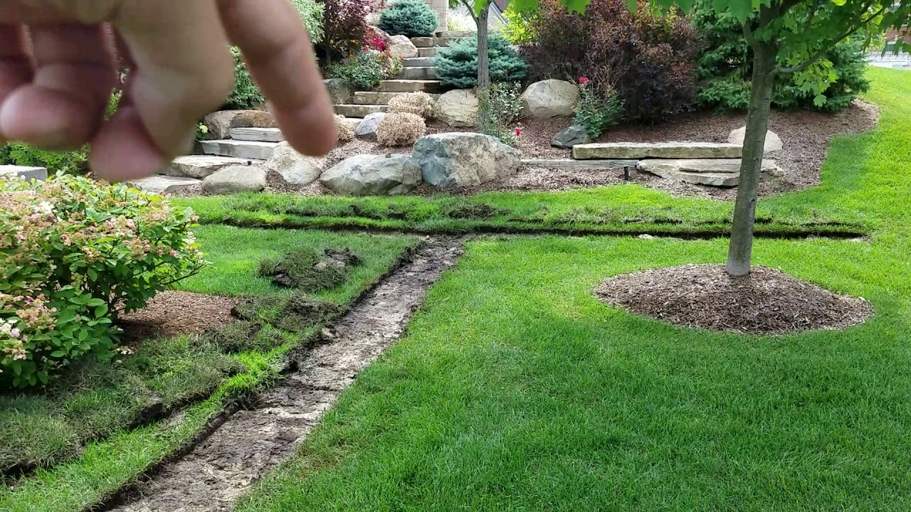 Curtain French Drain Yard Drainage System in Oakland ...