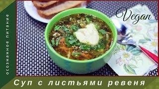 Суп из молодых листьев ревеня