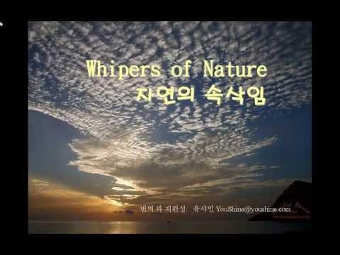 자연의 속삭임 Whispers of Nature - 유샤인 번역판