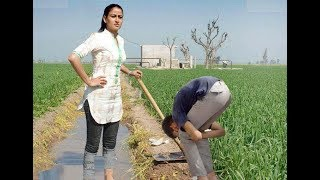 Funny videos 2016   funny clips in pakistan   funny clips new