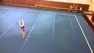 Спортивная гимнастика 2 юношеский разряд, вольные