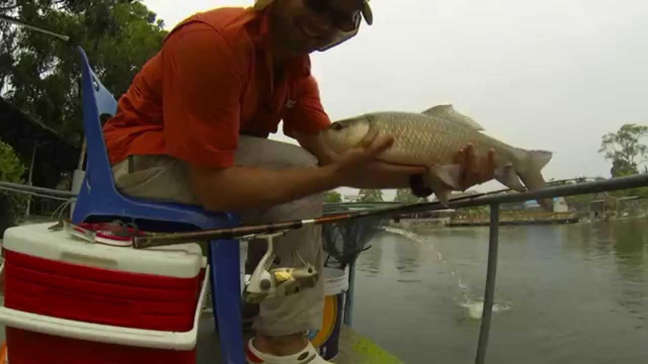 Рыбалка с берега паттайи