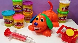 Doggy Doctor de Play-Doh - El Perrito Chiflado (Juguete de plastilinas) en Español.