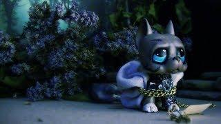 Littlest Pet Shop:꧁ℑɲ˅ɨţɨɲǥ ℰ˅ɨℓ꧂(Episode #1 Revived hope)