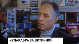 чупакабра в сумской области видео