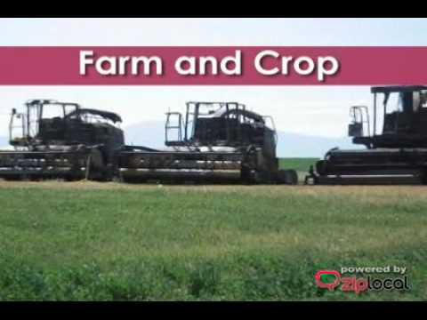 Farm Bureau Insurance - (208)678-0431