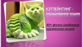 ГлаМУРные КОШКИ.ШЕДЕВРЫ ГРУМИНГА\Catpainting.Masterpieces grooming cats