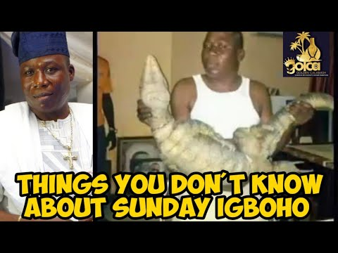 Download INTERESTING FACTS YOU DID NOT KNOW ABOUT SUNDAY IGBOHO