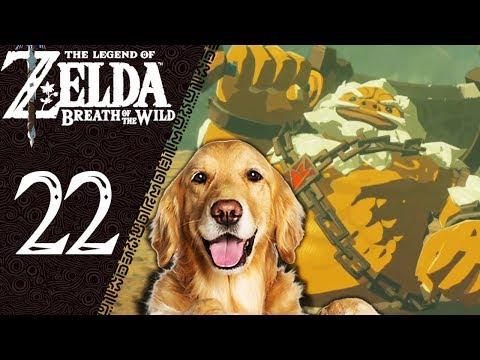 ZELDA BREATH OF THE WILD - LIVE