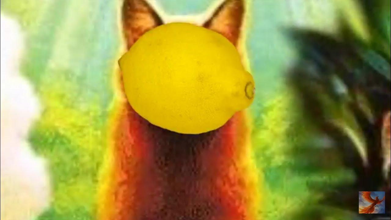 Mapleshade lemon