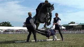 Atkinson Action Horses Showreel Oct 2018