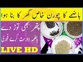Digestive System Problems And Solutions - Common Digestive Problem - Home Remedies For Digestion Pro