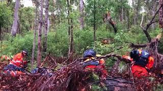 Police Search Gladstone Bushland in Cold Case Murder Investigation