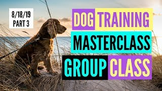 TRAIN Your DOG at GROUP CLASS Tewinkle 8/18/19 Part 3 MASTERCLASS DOG TRAINING