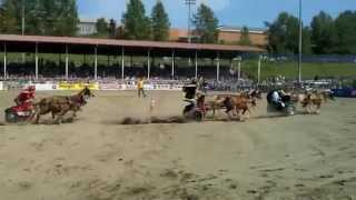 Cloverdale Rodeo 2012 Specialty Act: Pony Chariot Racing