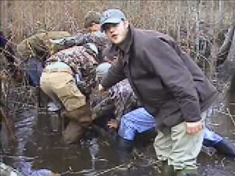 sc horry county dog hunt for HOGS