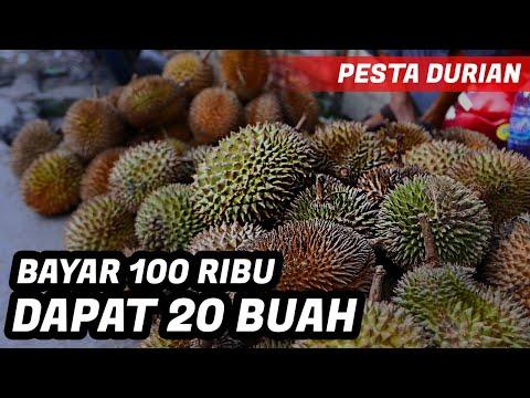 borong-durian-1-karung-!!!!-pesta-durian-!