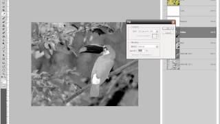 Урок Adobe Photoshop - Деление на пантоны.