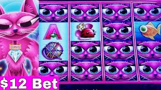 Miss Kitty Gold Slot Machine $12 Bet Bonus Won | NICE SESSION On 5c Denomination Miss Kitty Gold