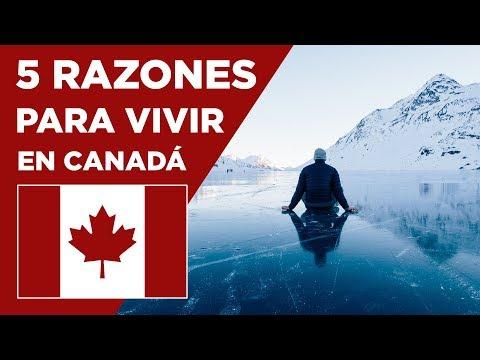 5 RAZONES para VIVIR en CANADÁ - Conociendo Canadá