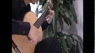 もののけ姫 ギター Princess Mononoke