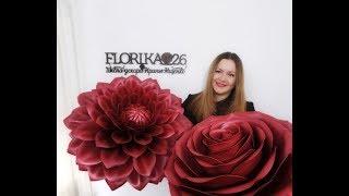 Живое обучение ростовым цветам из изолона и фоамирана. Мк в Ставрополе с 3 по 8 февраля
