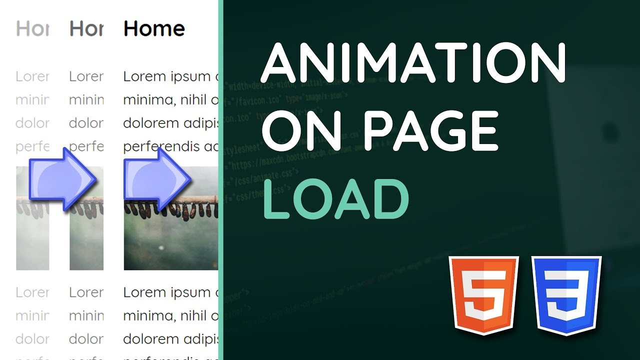 Create Transitions/Animations on Page Load with HTML & CSS - Web Design  Tutorial