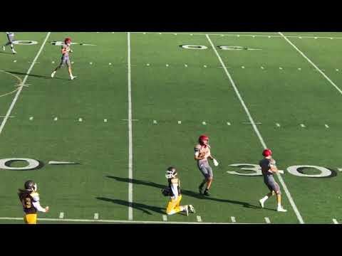 DJ Ralph 2020 QB vs Torry Pines and San Marcos